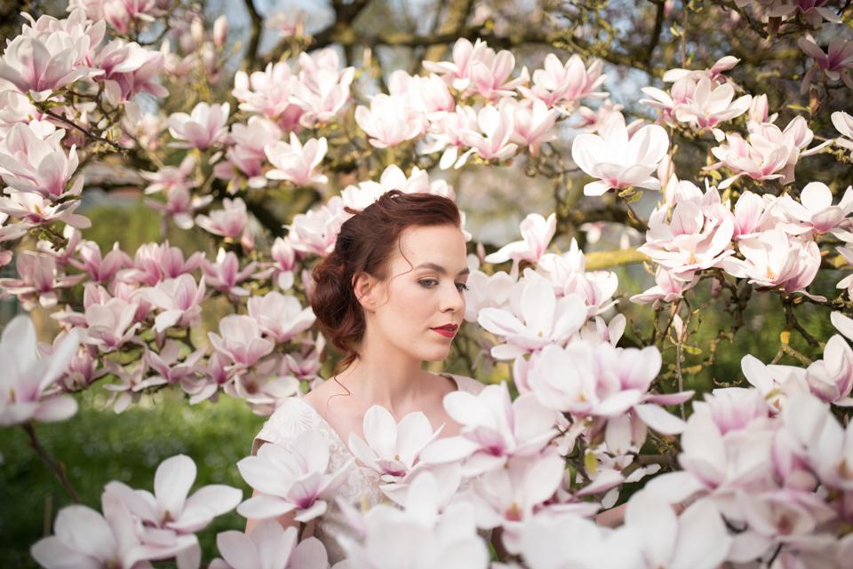 Magnolia (1 von 2)