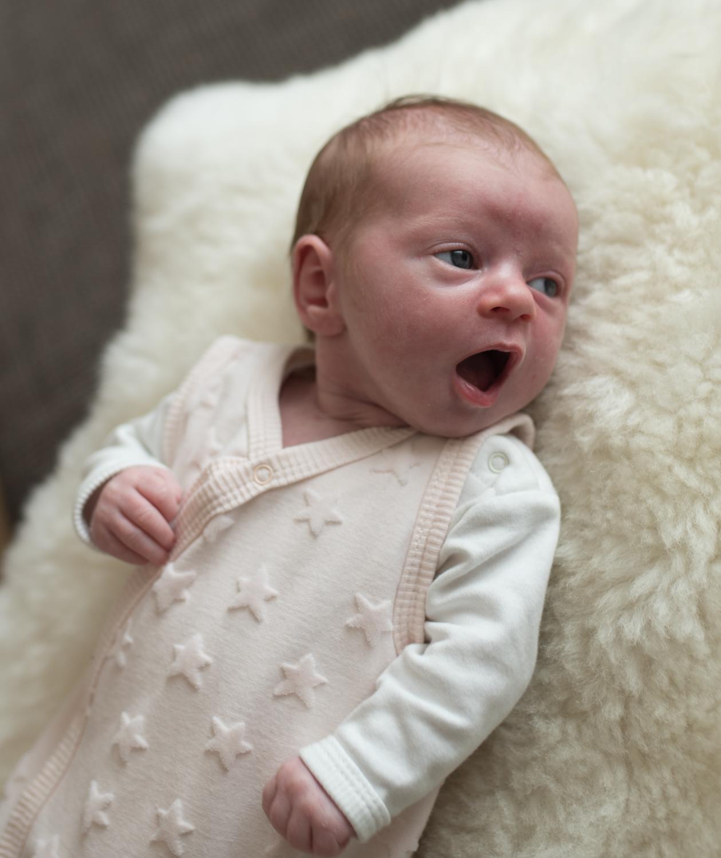 Newborn IDA+ Familie Wieden (161 von 287)