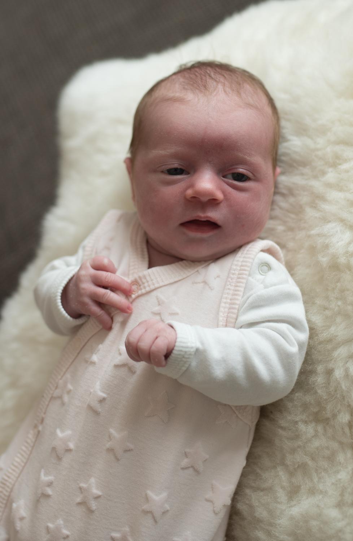 Newborn IDA+ Familie Wieden (165 von 287)